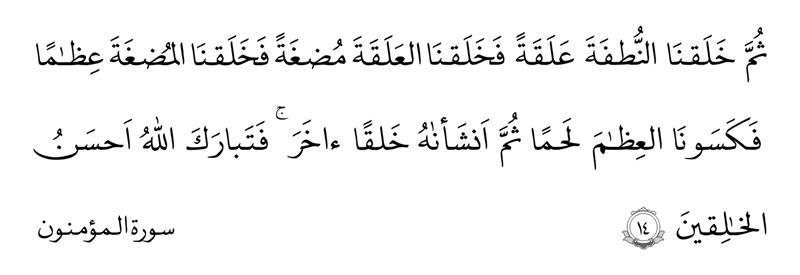 سوره المؤمنون آیه ۱۴