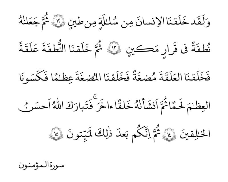 سوره المؤمنون آیات ۱۲ تا ۱۵