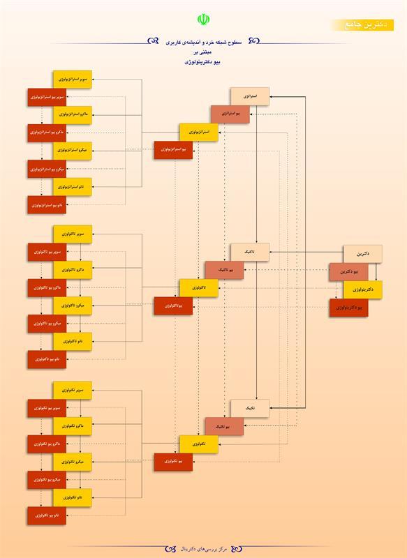 سطوح شبکه خرد و اندیشه کاربردی مبتنی بر بیو دکترینولوژی