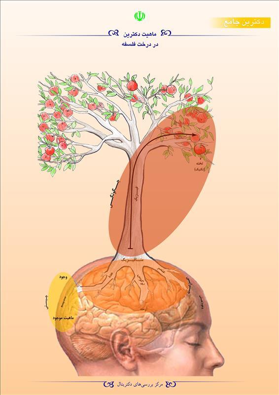 ماهیت دکترین در درخت فلسفه